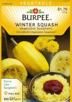 How To Grow Spaghetti Squash A Tried And True Method Tell If Your Is Ready Push Fingernail Into The Outside Skin