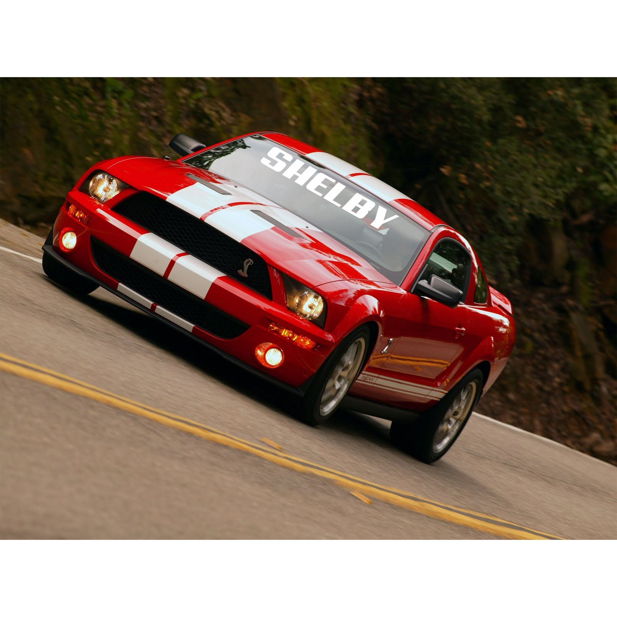 Windshield decal shelby