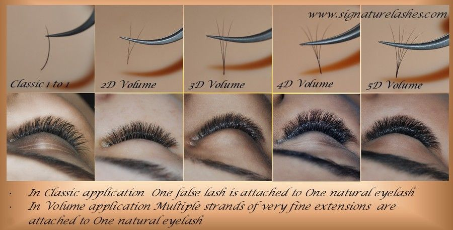 937aac1062d Signature Lashes, Volume Eyelash Extensions, Classic Eyelash Extensions, 3d  Volume Eyelash Extensions, Russian Volume , Hollywood Volume