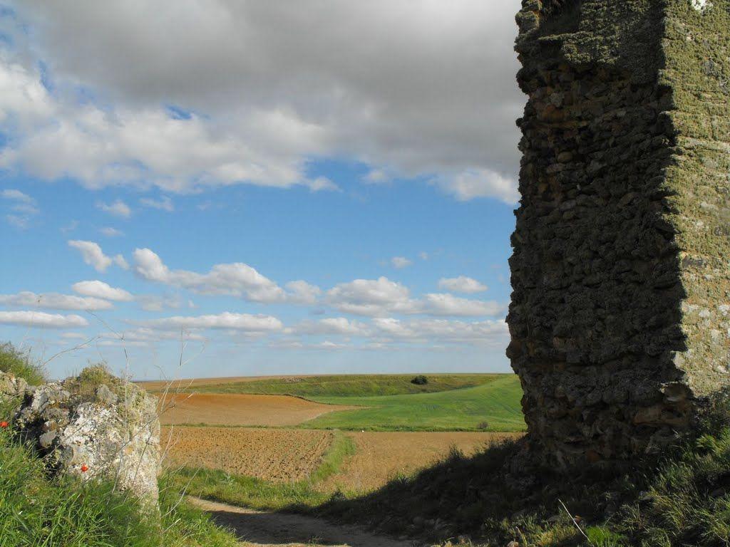Ruinas de Castrotorafe, Zamora