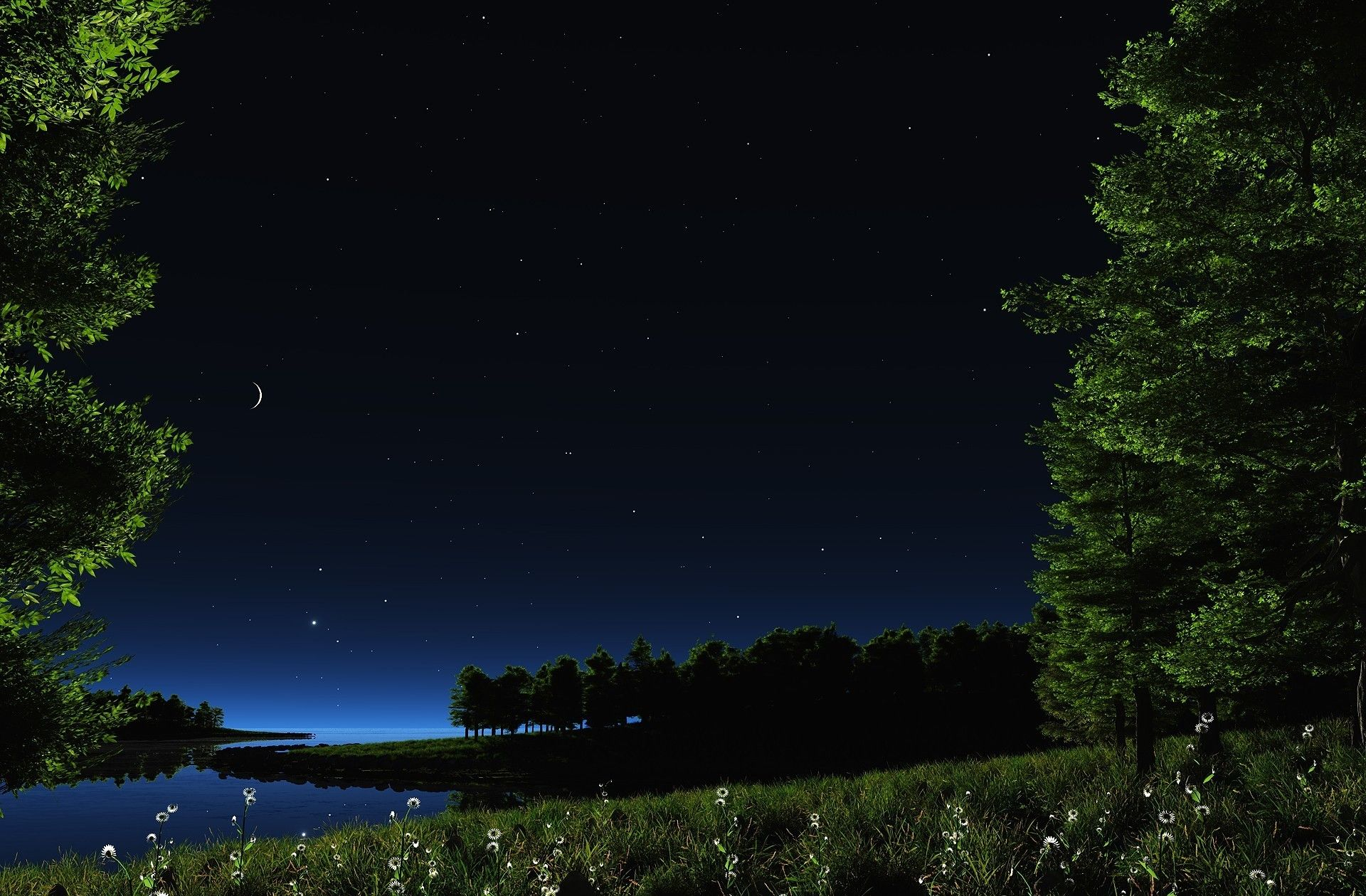 Pond Herbs Lake River Stars Moon Landscape Night Grass Nature Plants Daisies Flower Night Scenery Starry Night Wallpaper Nature Images