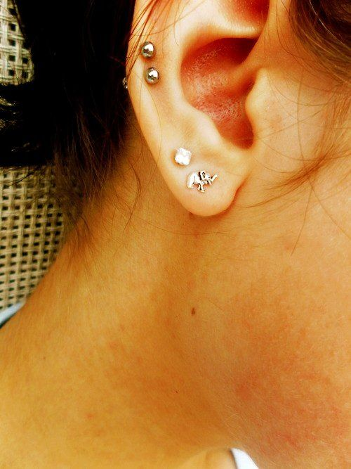 mini elephant 14K solid gold lobe outter conch helix piercing inner conch