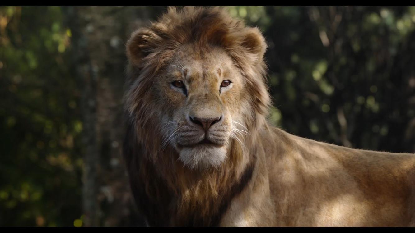 lion king 2019 stream # 25