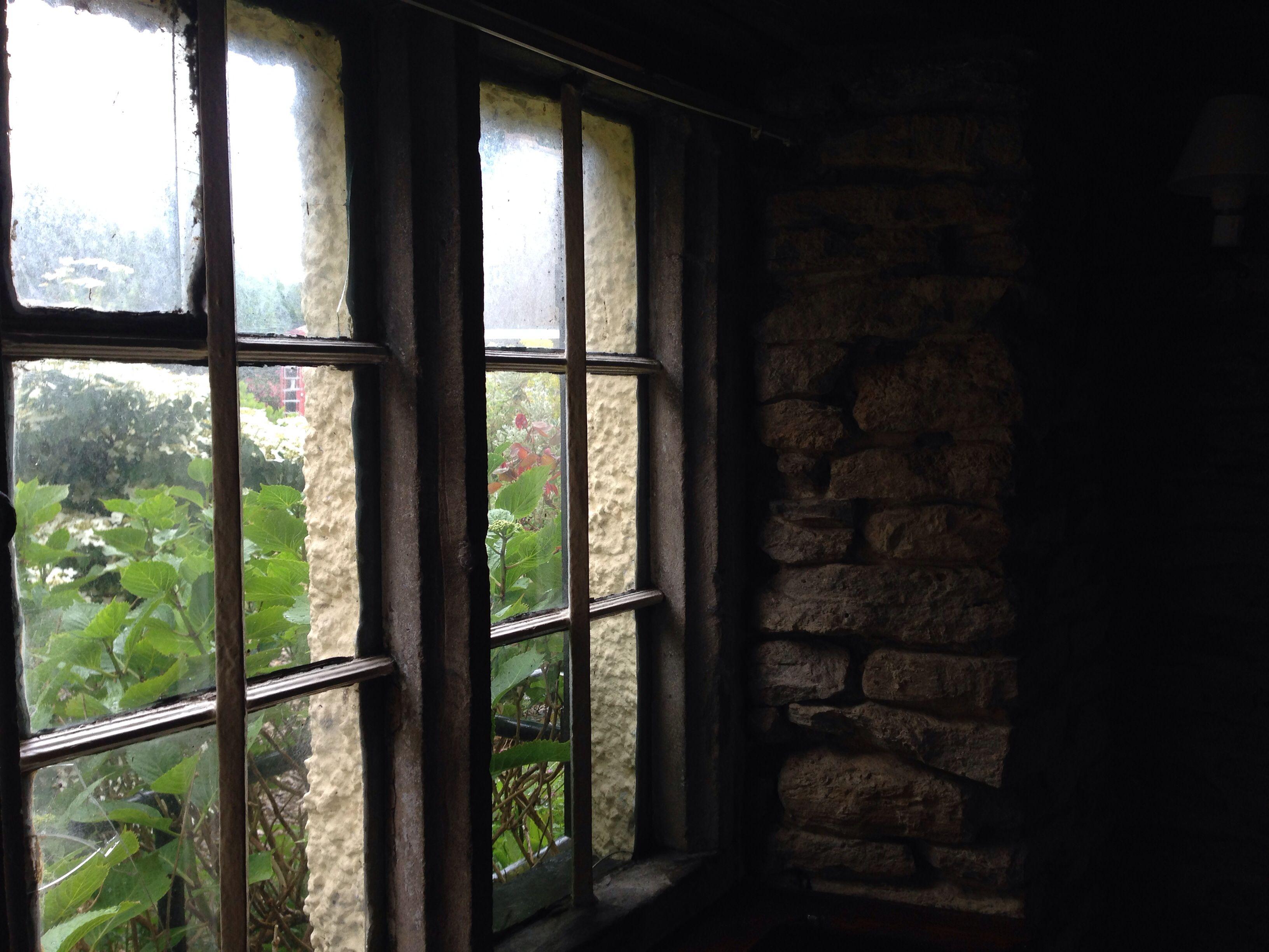 Mullein windows
