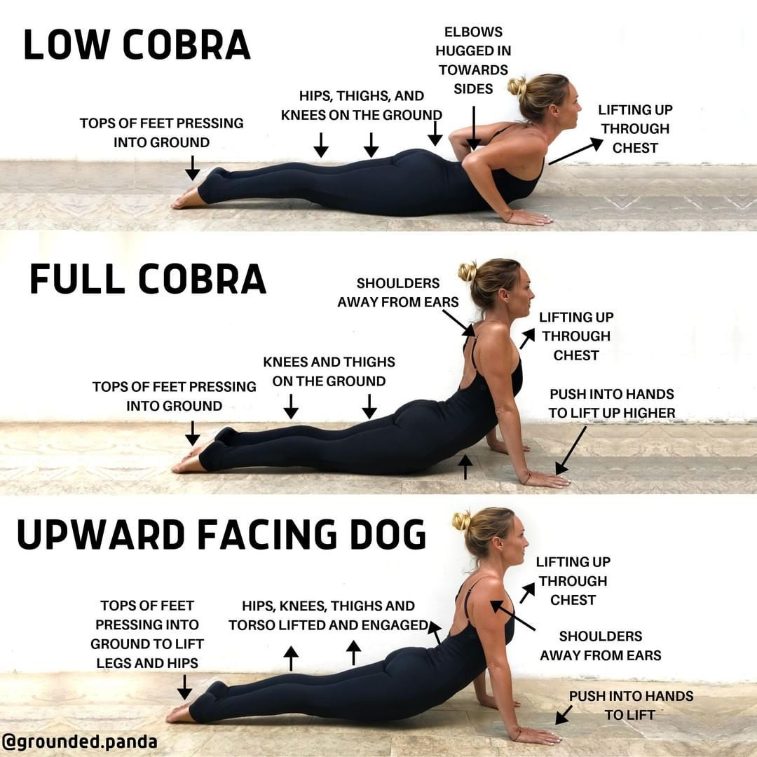 Upward Dog Vs Cobra Yoga