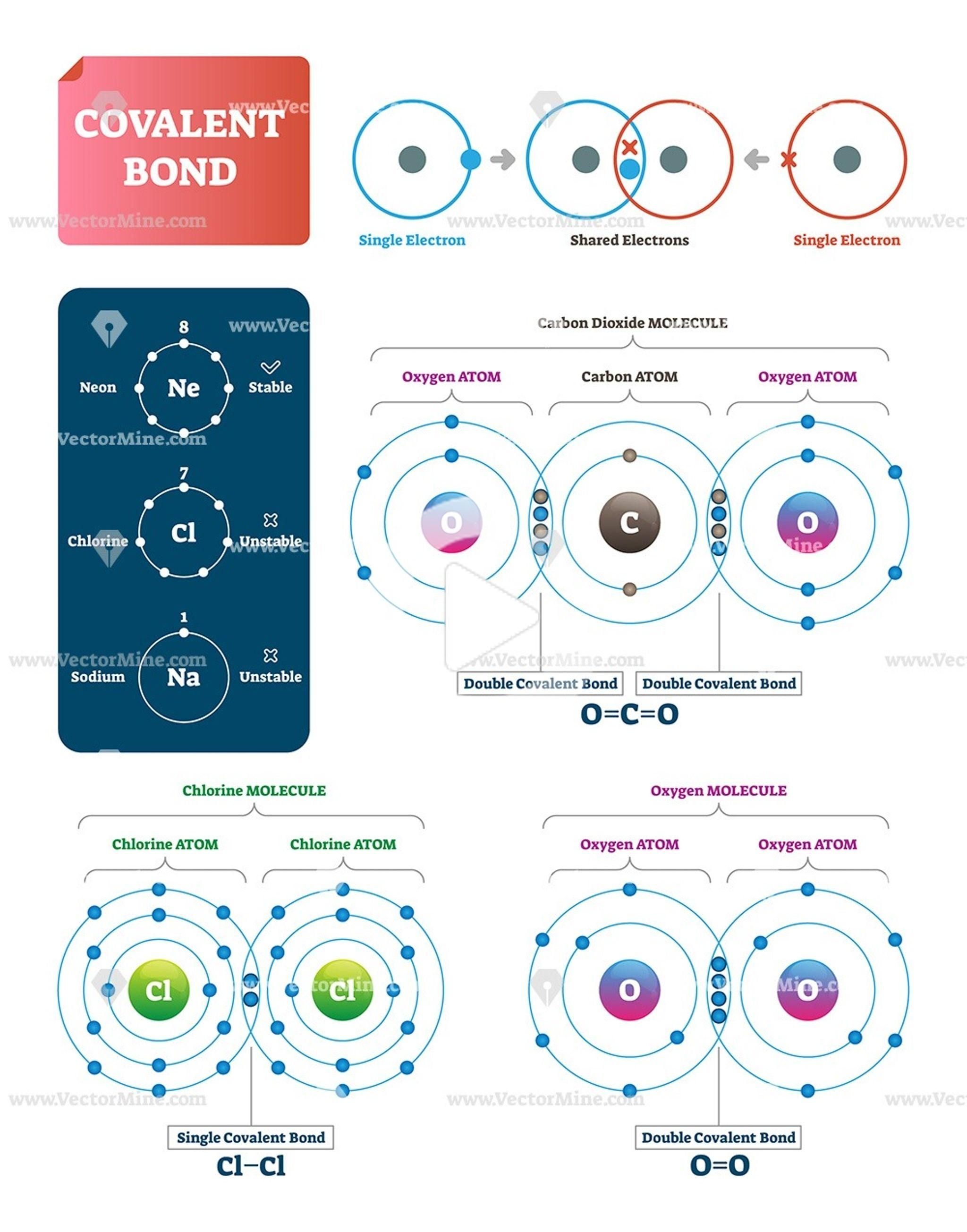 Covalent Bond Vector Illustration Infographic Diagrams In 2020 Covalent Bonding Teaching Chemistry Chemistry Classroom