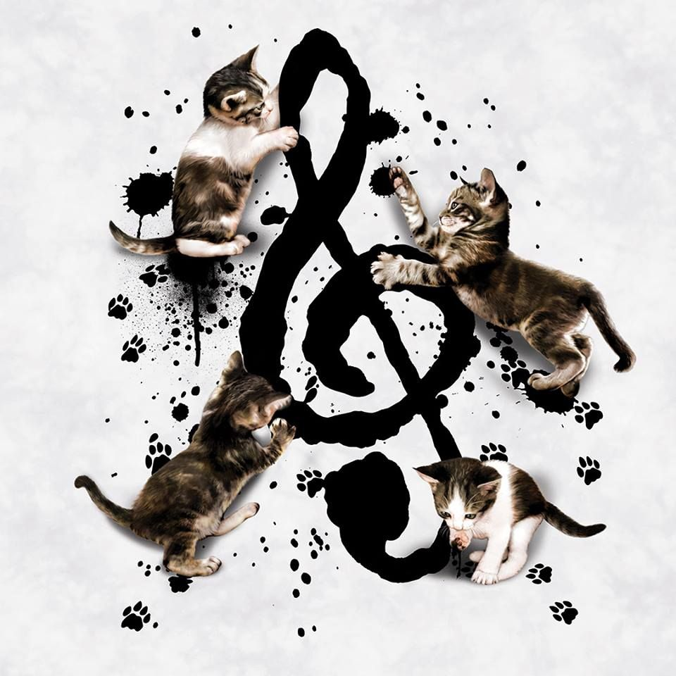 Cat Kitten Music Note Play Fantasy World Cats And Kittens Kitten