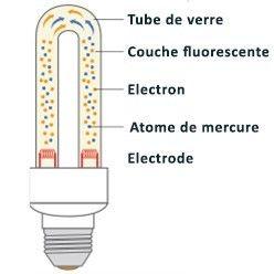Comment Bien Eclairer Avec Les Nouvelles Ampoules Ampoule Eclairer Lamp