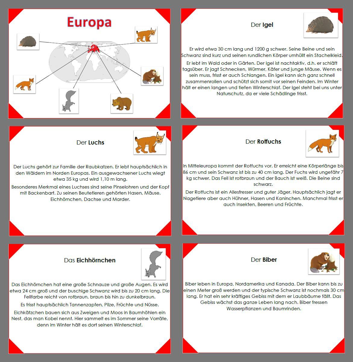 Tiere Der Welt Europa Unterrichtsmaterial Im Fach Sachunterricht In 2020 Europa Schule Spielerisches Lernen Europa