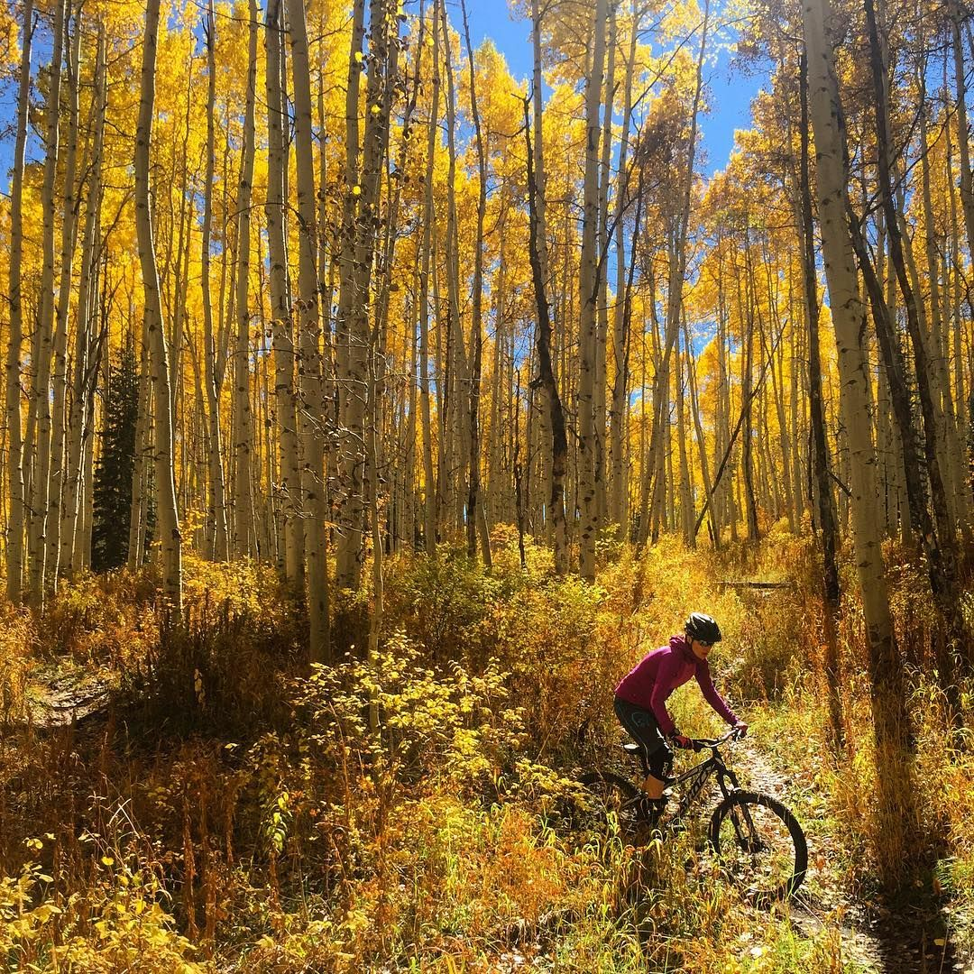 From Ryan Toth All About The Aspens Evoexplores Freeride