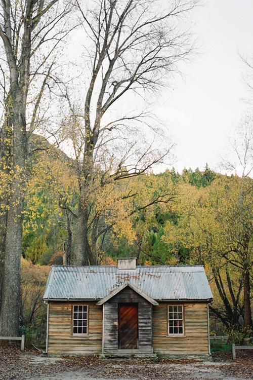 Brooke Holm - Rustic cabin