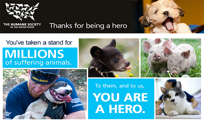 simple thank you infographic Google Search Humane