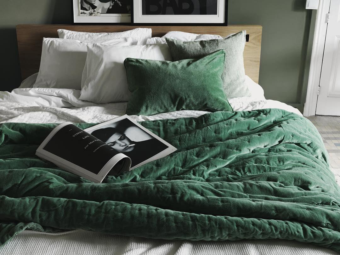 Green Velvet Paolo Bedspread Bed Bath Pinterest