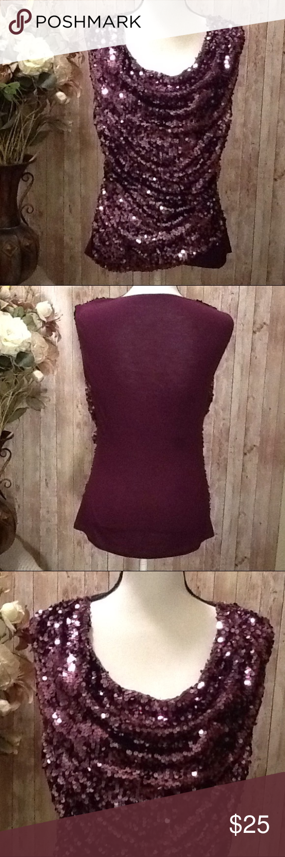 Tahari Sequin Top Blouse Size Small Purple NWOT Fancy top by Tahari, NWOT, size Small, beautiful color of dark purple/plum, retails for approx $100. Will look great wearing with a nice skirt or pair of pants or cute shorts!Looks better in person, lots of shiny sequins! Solid color on the back. Bundle to save 15% off your purchase of 2 or more items from my closet! T Tahari Tops
