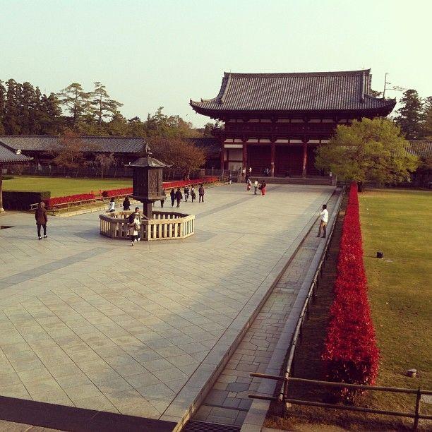 東大寺 (Tōdai-ji Temple) in 奈良市, 奈良県