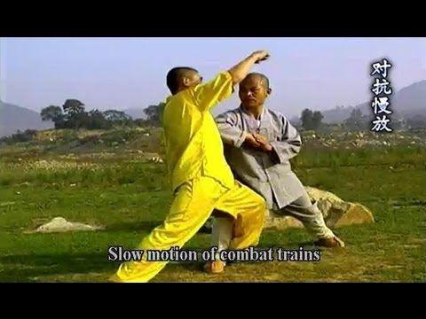 Shaolin Big Flood Kung Fu Da Hong Quan Form  Combat Methods
