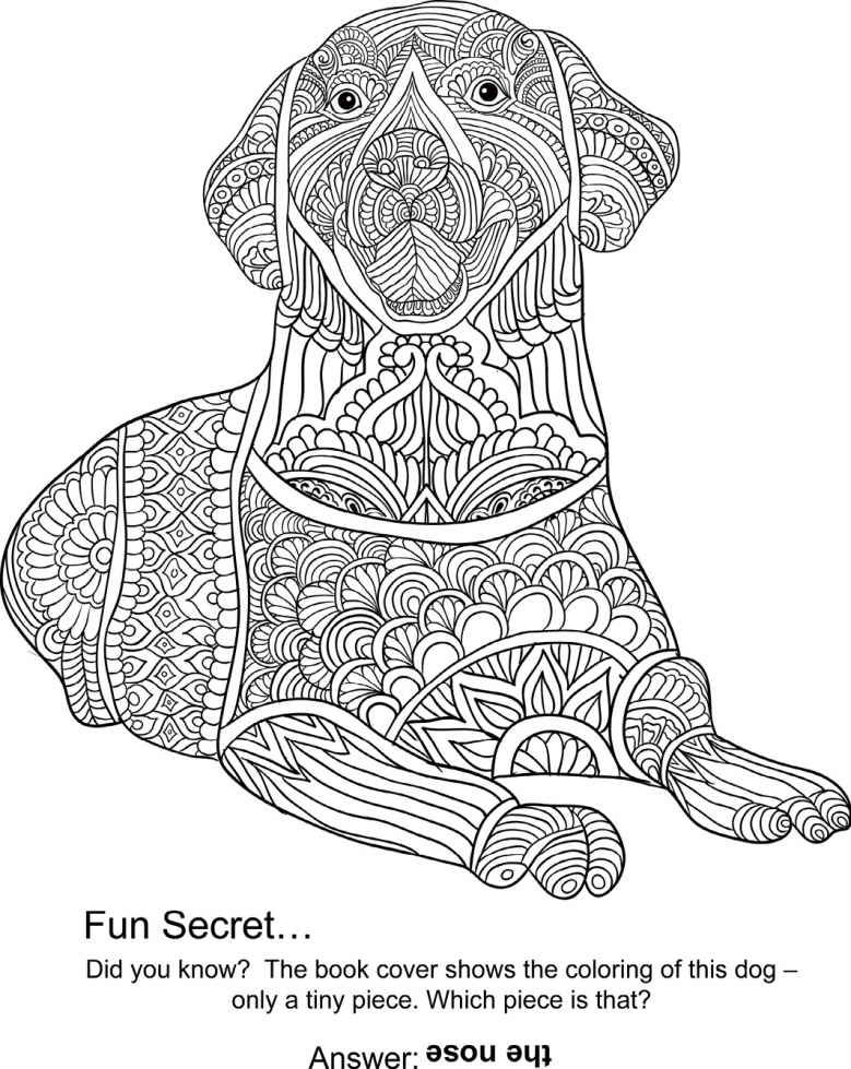 Animal The Coloring Book 50 Cool Design Colouring Best
