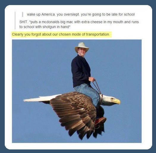 When someone forgot that we don't run to school. We FLY ON THE WINGS OF FREEDOM. | 17 Times America Got Burned By Tumblr
