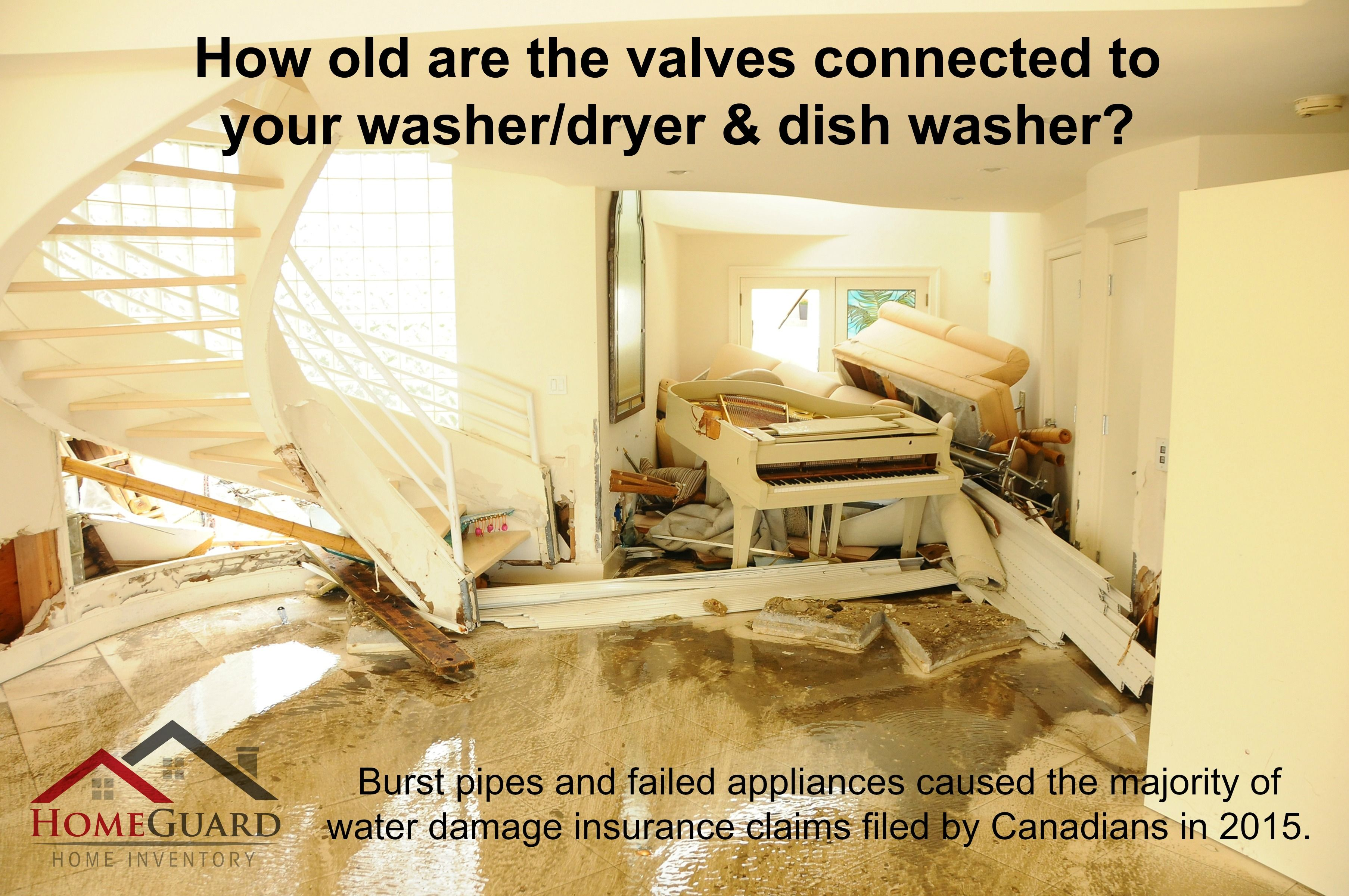 How old are the valves connected to your washer dryer
