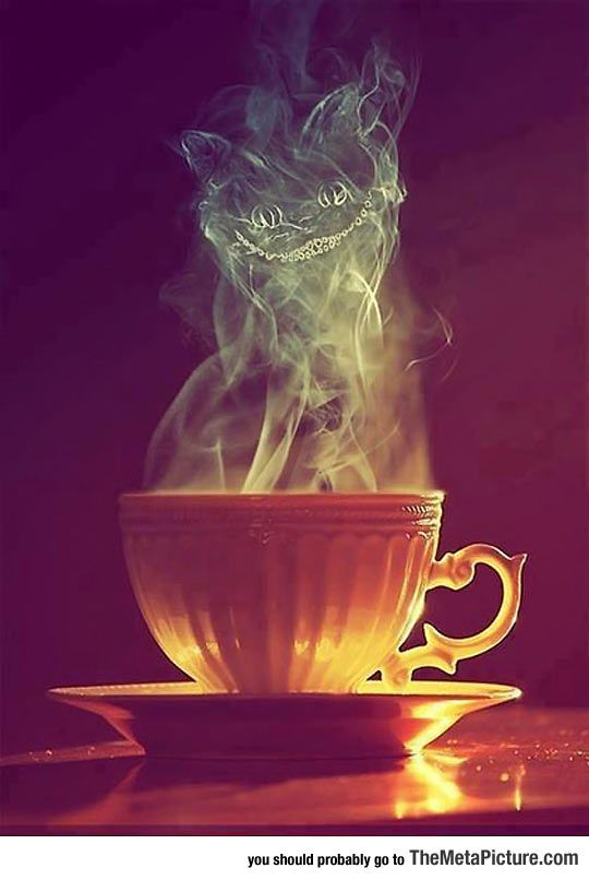 Cheshire Tea, We're All Mad Here