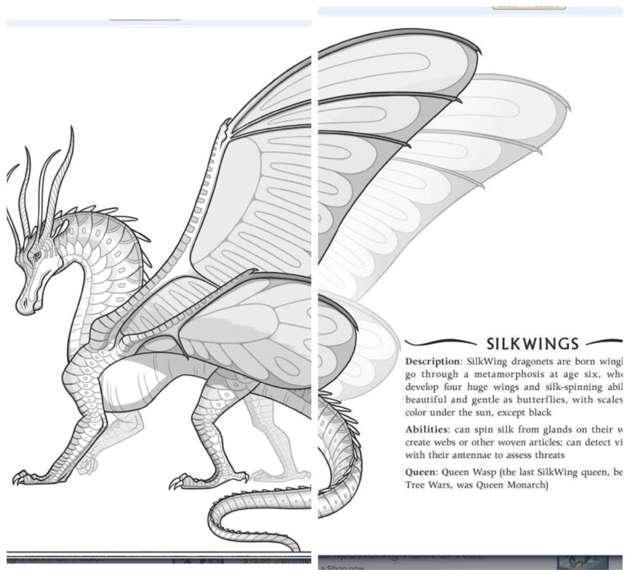 Confirmed Tribe For Book 11 Wings Of Fire Dragons Wings Of Fire