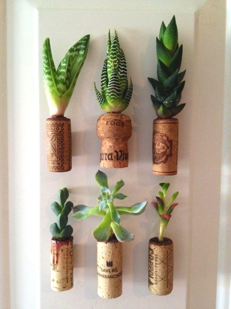 Bouchon de li ge comme mini pot pour une plante succulente - Bouchons de liege bricolage ...
