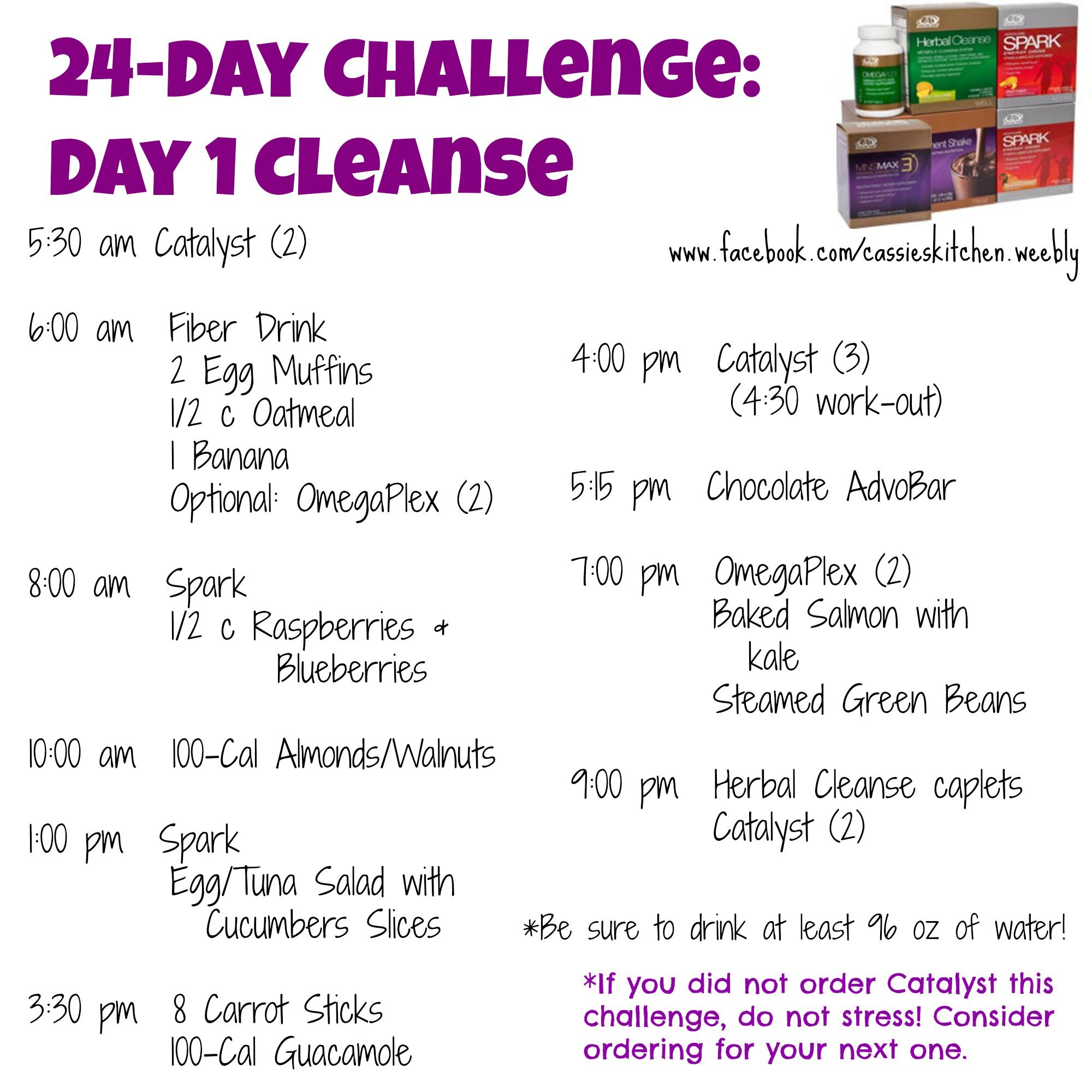 Advocare 10 Day Cleanse Meal Plan: A Meal Plan for the first 10 ...