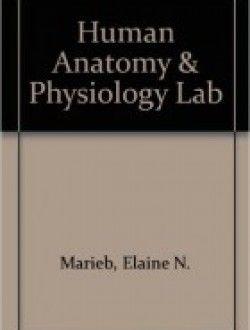 Human anatomy physiology laboratory manual cat version free human anatomy physiology laboratory manual cat version free ebook online fandeluxe Choice Image