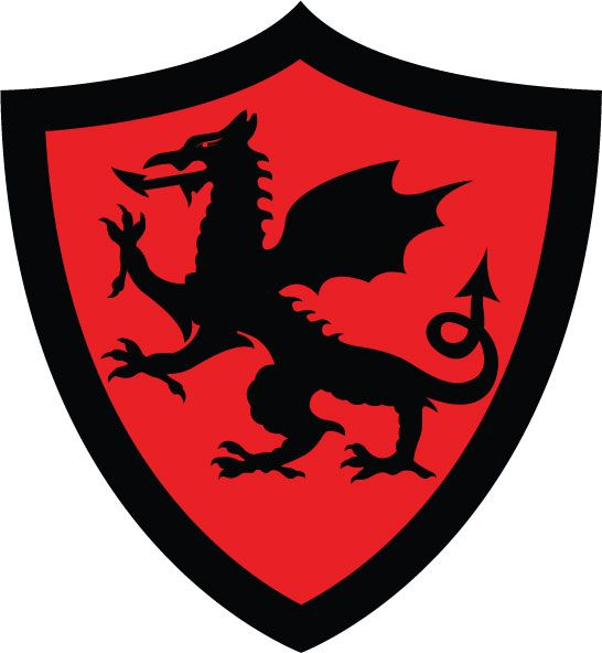 medieval dragon shield dragon shield medieval by