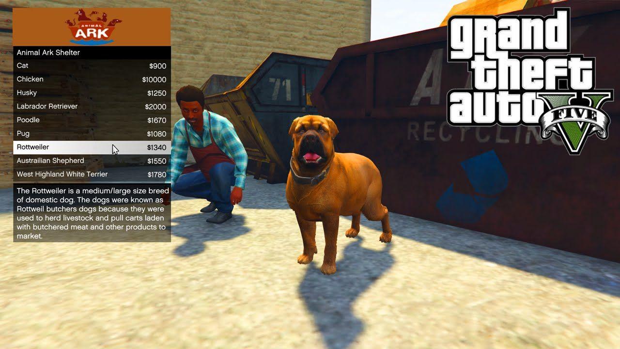 GTA 5 PC Mods - ANIMAL PET SHOP MOD!!! - GTA 5 Pet Mod w/ Wildlife
