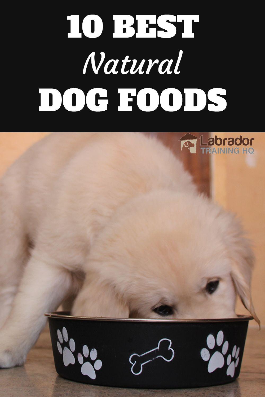 10 Best Natural Dog Foods Best Natural Dog Food Natural Dog