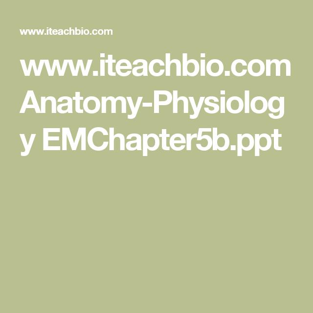 www.iteachbio.com Anatomy-Physiology EMChapter5b.ppt