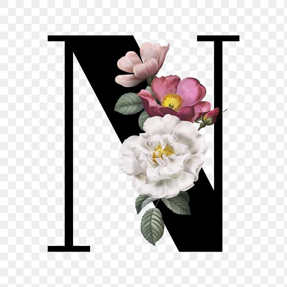 Classic And Elegant Floral Alphabet Font Letter N Transparent Png Premium Image By Rawpixel Com Man Lettering Fonts Lettering Alphabet Fonts Fonts Alphabet
