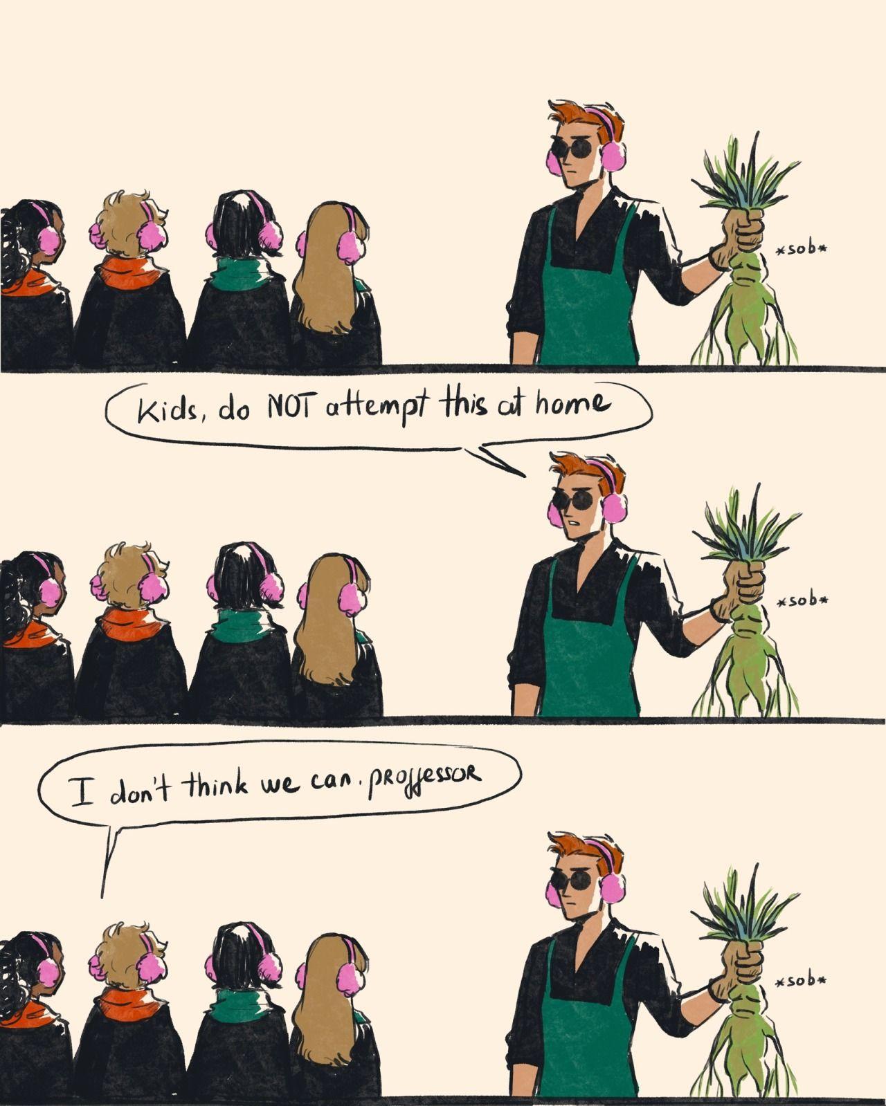 Nekocat Nekocat Harry Potter Comics Harry Potter Crossover Harry Potter Funny