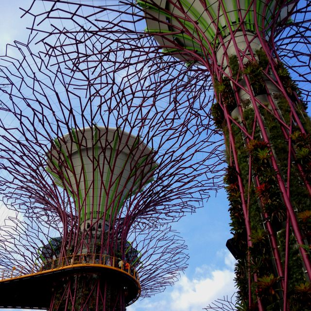 Garden By The Bay #Singapore