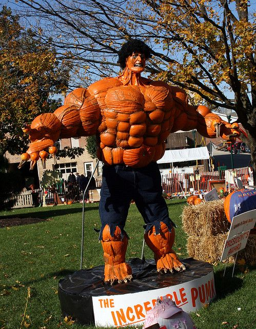 You won't like him when he's angry: pumpkinfest sycamore il