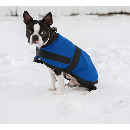 Dover Saddlery Dog Blanket Puppy Blanket Dogs