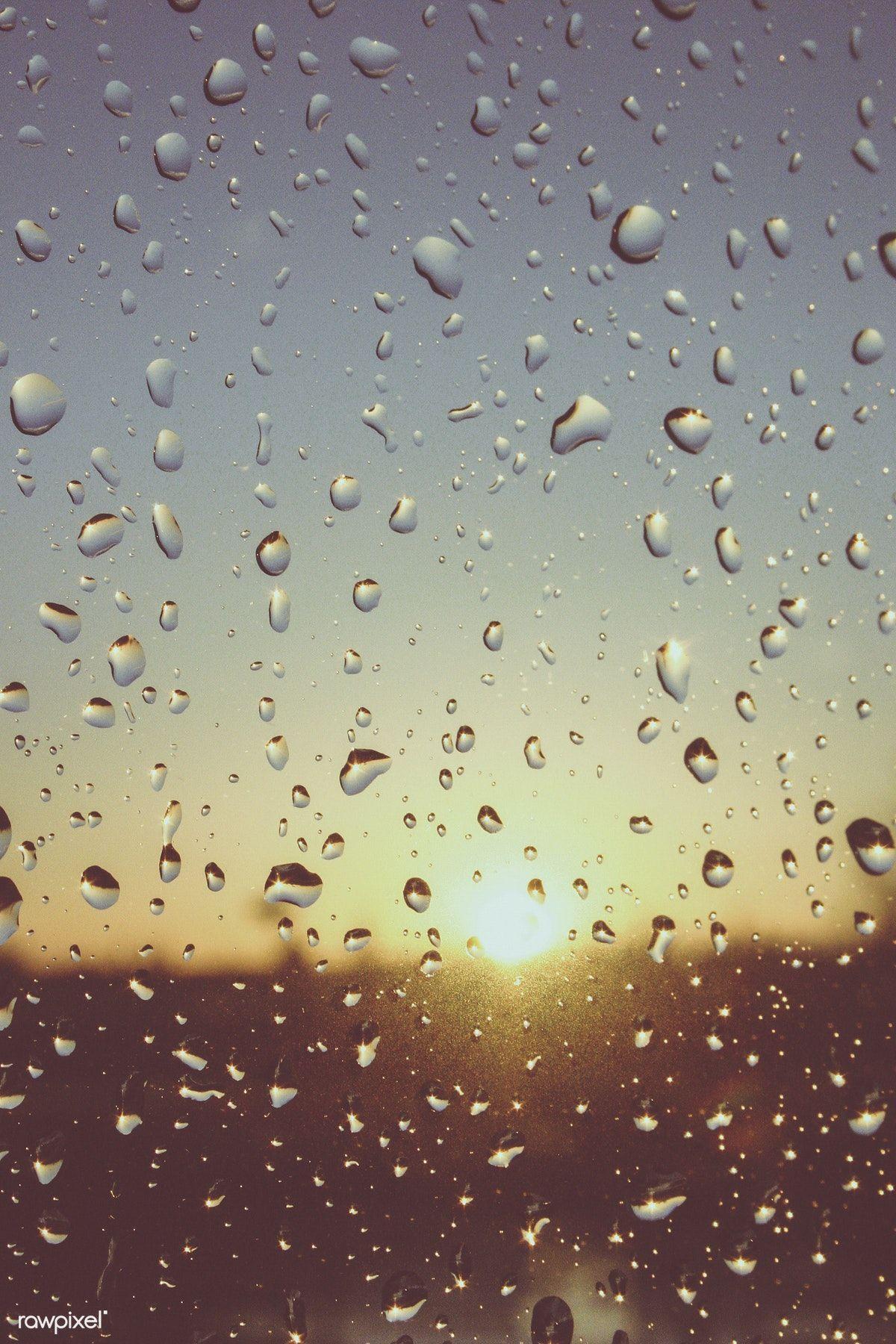 Raindrops On Window Pane Free Image By Rawpixel Com Rain Drops On Window Rain Drops Rain Window