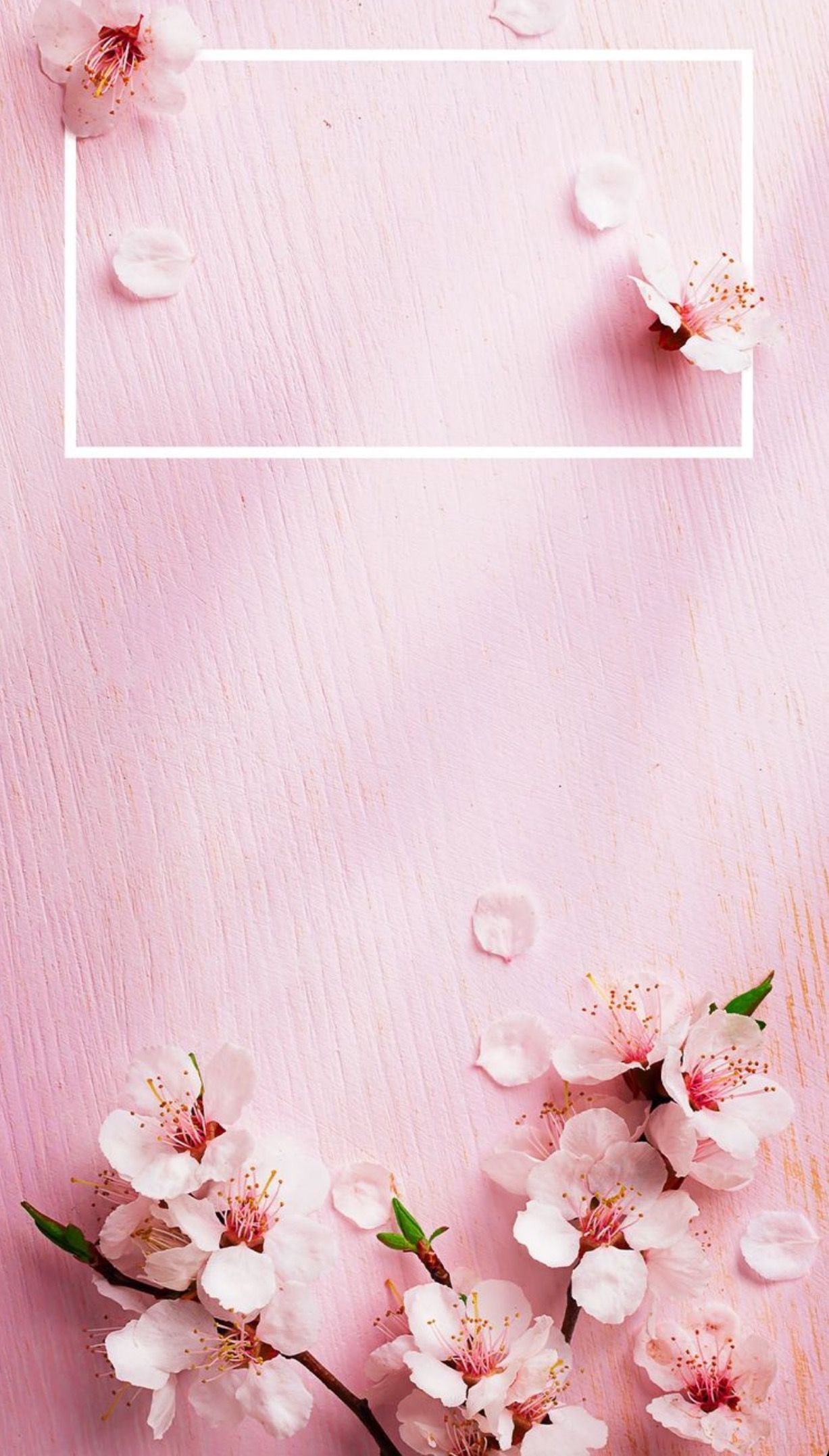 Pin By Ralica Todeva On Wallpaper Iphone Iphone Spring Wallpaper Spring Wallpaper Rose Gold Wallpaper Coolest wallpaper flower with quotes