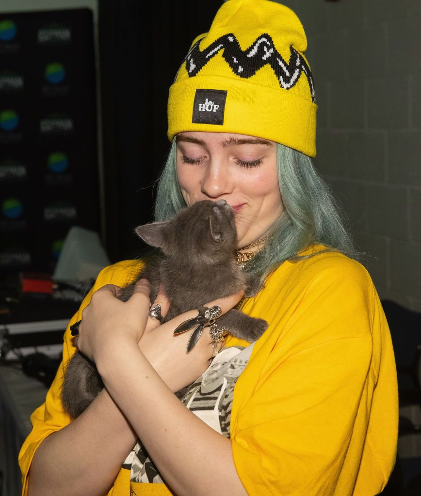 Billie Eilish Holds A Kitten From Motley Zoo During Deck The Hall Billie Billie Eilish Kitten