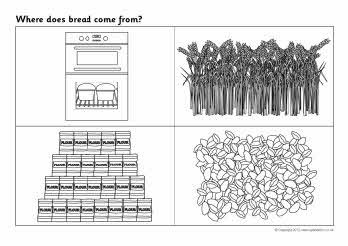 Where Does Bread Come From Sequencing Worksheets Little