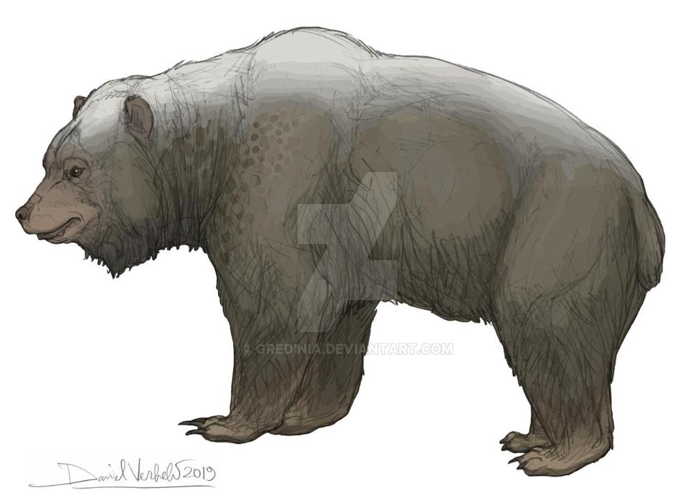 46+ Bear deviantart ideas