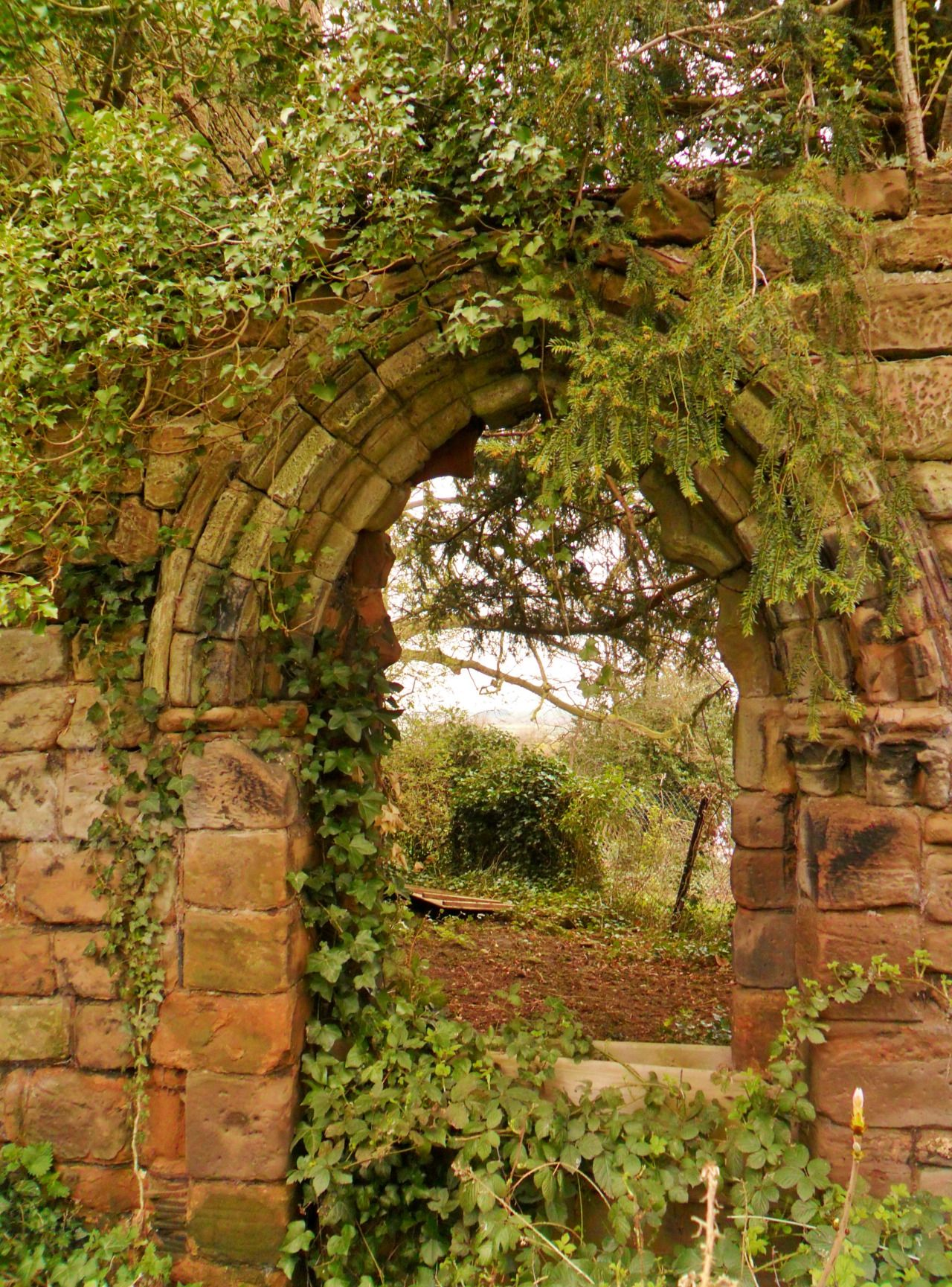 """Over grown Archway, St John\'s Church, Shenstone, England"""" 