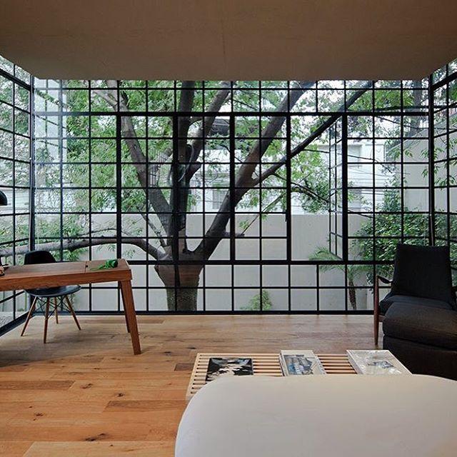 Casa Estúdio Hill, MexicoCCA Centro de Colaboración ArquitectónicaPhoto Onnis...
