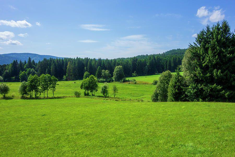 Verdes montañas junto al lago Schluchsee en Alemania
