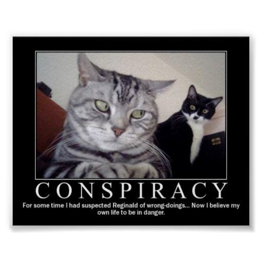 48ebb76b532ae8b3d45c0d079d70deac demotivational conspiracy kitty poster things to stick pinterest