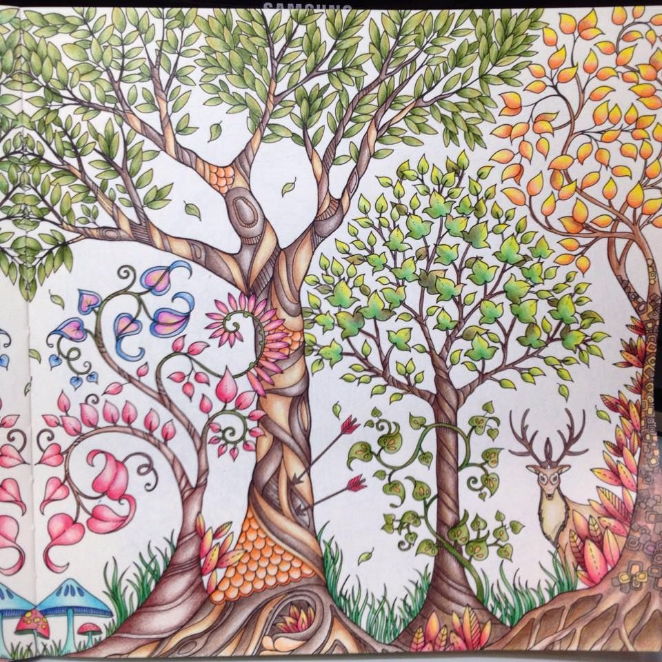 Inspirational Coloring Pages From Secret Garden Enchanted Forest And Other Books For Grown