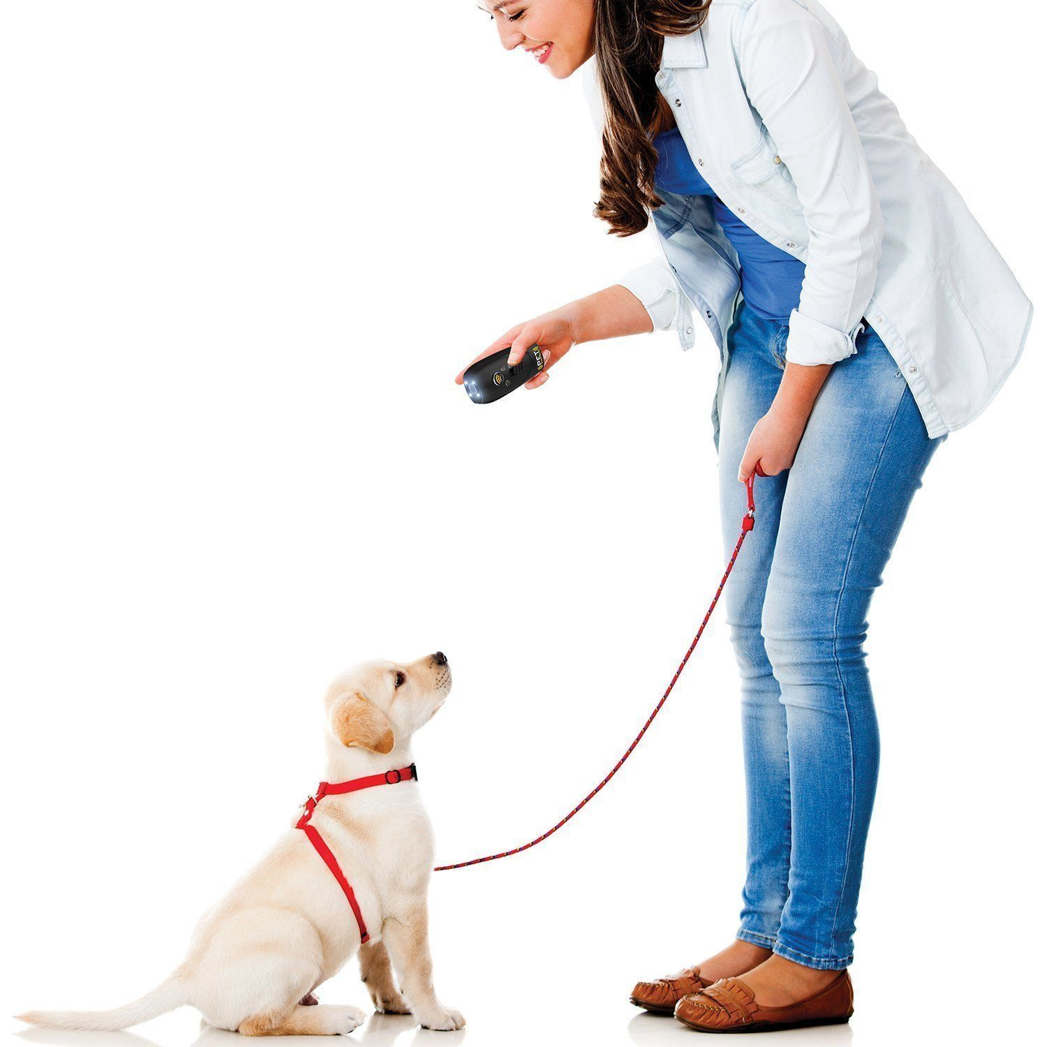 Zoom Pet Command Ultimate Dog Training System Ing Control And