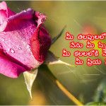 Best Good Morning Quotes In Telugu With Images