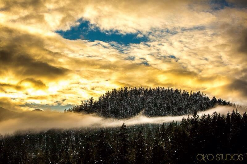 One single choice, my anxiety is gone.. completely gone from my  mind and my heart. Now that I am relaxed,  the world feels different.. as so do I  #VancouverNature #Vancouver #Vancity #nevergiveup #hope #Winter #ofVancouver #VancouverCity #InteriorBC #destination #Mountains #mountdaraitan #hike #Canadas #movelikeapro #yearend #trip #summit #landscape #life #adventuregroup #passion #adventure #success #liveoutside #vancouverphoto #weddingphotographer #destinationweddings #newyear #naturephotogra